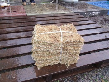 洗い芝工程