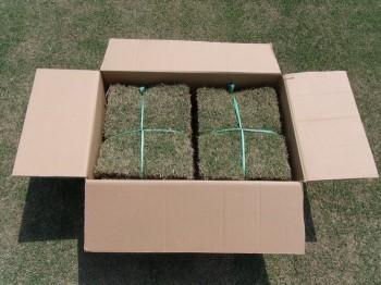 小口の場合の芝の配送(高麗芝)